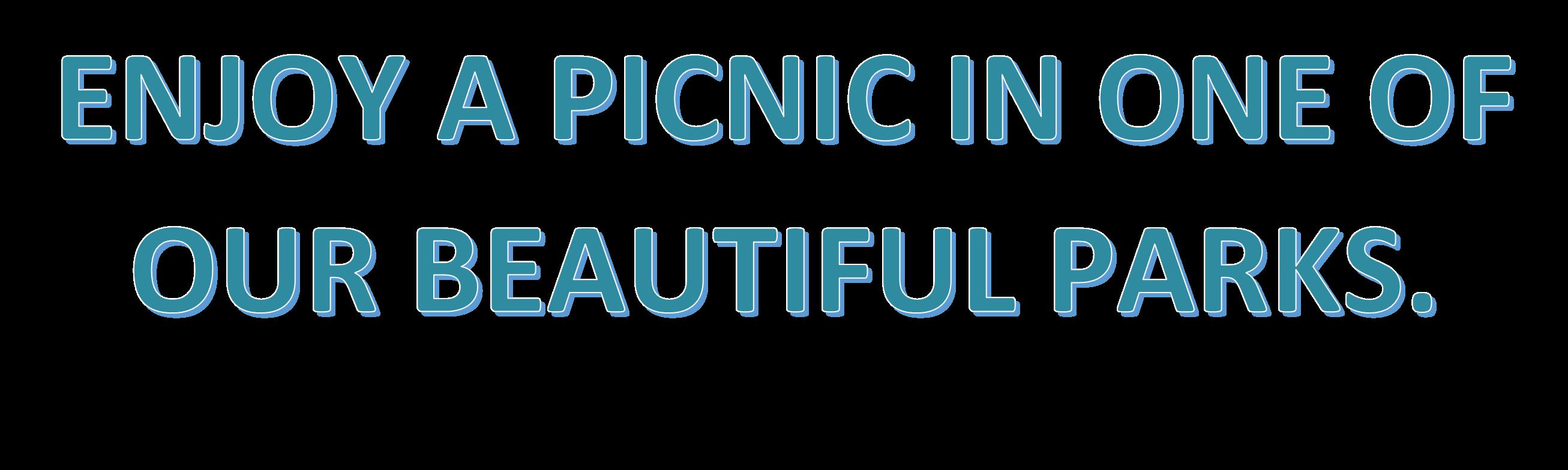 picnic text 3