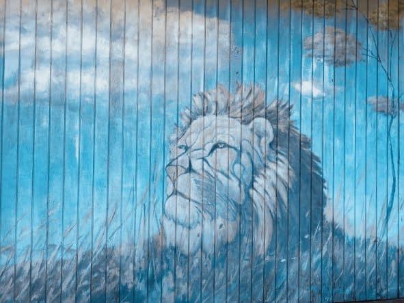 lion mural resized